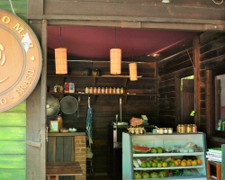 Vegan-friendly restaurants in Rio